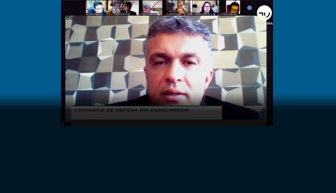 Diretor Alan Santos em audiência pública virtual promovida pela Câmara dos Deputados